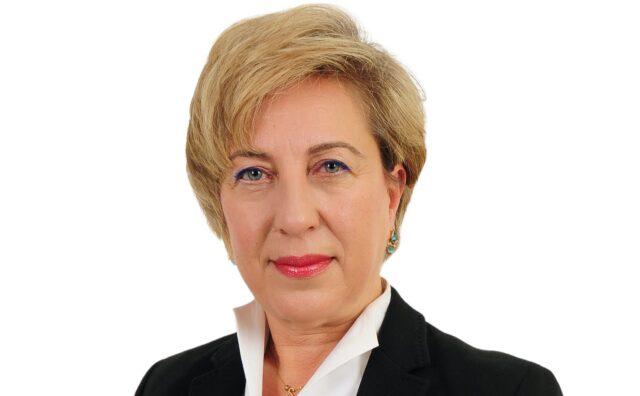 Sanko Enerji Genel Müdür Yardımcısı Sedef Karagöz