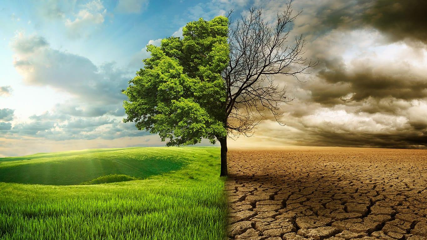 Elektrifikasyon ve İklim Değişikliği