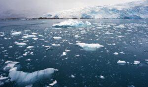 arktik buz erimesi