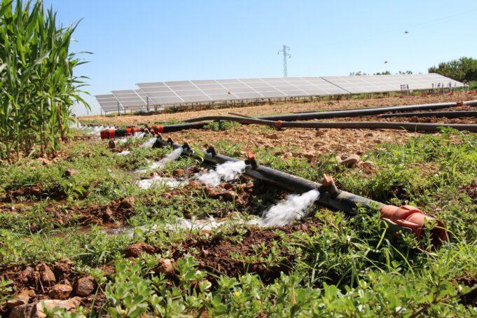 Şanlıurfalı çiftçi tarımsal sulama için güneş sistemi kurdu