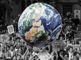küresel iklim krizi ve pandemi